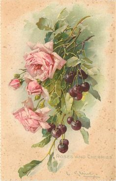 ROSES AND CHERRIES