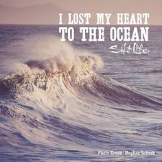 I lost my heart to the ocean // Ocean quotes