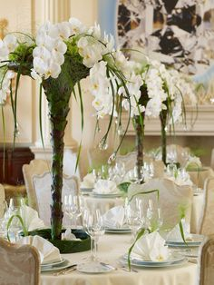 Champagne shape coupes of Galax leaves where from Phaleanopsis orchids are growing out for luxurious modern and classy weddings by Robert Koene