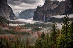 Damp Spirits - JohnSlotPhotography.com