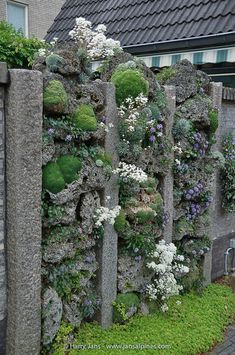 Side Garden, Garden Beds, Garden Art, Garden Design, Moss Garden, Succulents Garden, Modern Backyard, Backyard Landscaping, Small Natural Garden Ideas