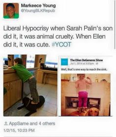 Hypocrisy.  But for the record, I HATE either and all dogs being stepped on!