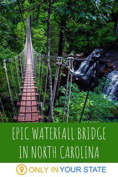 If you're up for a scenic adventure, cross this swinging waterfall bridge in North Carolina. You'll also enjoy the thrill of ziplines on this outdoor nature tour. Vacation Places, Vacation Spots, Places To Travel, Travel Things, Vacation Packages, Travel Destinations, Weekend Trips, Day Trips, Weekend Fun