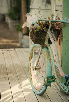 shabby chic old bicycle display Velo Vintage, Vintage Bicycles, Vintage Love, Vintage Doors, Vintage Romance, Vintage Green, Vintage Travel, Vintage Style, Vintage Inspired
