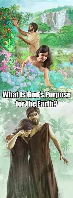 http://www.jw.org/en/publications/books/good-news-from-god/why-did-god-create-the-earth/