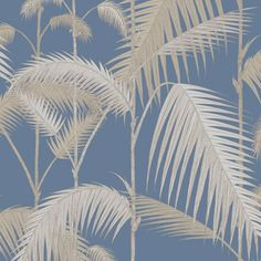 Palm Jungle 95/1006 - Contemporary Restyled - Cole & Son