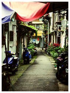 <b>Finding beauty in urban clutter.</b>