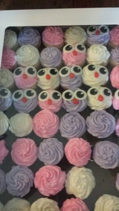 Cupcakes to go with owl cake