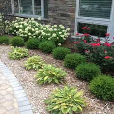 Landscape Planting Gallery | Plymouth MI | Northville Mi | Serene Landscape Group Front Porch Landscape, Front Yard Garden Design, Lawn And Landscape, House Landscape, Lawn And Garden, Front House Garden Ideas, Garden Beds, Landscape Architecture, Small Front Yard Landscaping