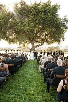 A tree symbolizes strength, life, vitality, roots. And it happens to make the perfect backdrop for a small wedding.