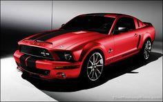 2009 Mustang GT.