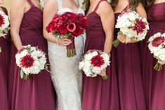 Bride and bridesmaids holding round bouquets in shades of red and white. Christmas theme wedding. Maroon bridesmaids dresses.
