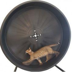 catwheel