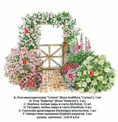 Плетистая роза - правильный уход: 35 садовых арок из роз. Обсуждение на LiveInternet - Российский Сервис Онлайн-Дневников