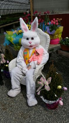 Meeting the Easter Bunny for the 1st time.