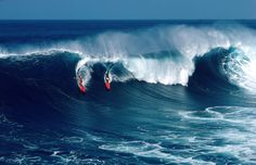 photos by Neil Leifer  Scenic view of surfers on the Waimea Bay.