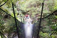 Swinging Rope Bridge, Abel Tasman National Park, NZ Royalty Free Stock Photo