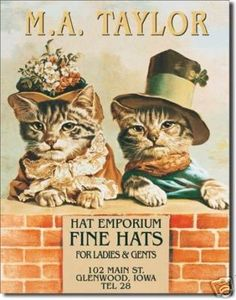 HAT STORE CATS KITTENS TIN SIGN