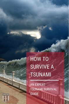 Few people know how to survive a tsunami because they think they'll never experience one. Tsunami preparedness is the key to living to tell the story. #surviveatsunami #tsunami #survival #guide #preparadness Survival Guide, Survival Skills, Tsunami, Key, Beach, Water, People, Outdoor, Survival Guide Book