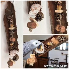 Parrot toy made with wood bark, cork, pine cones, pasta, dehydrated corn and wood.