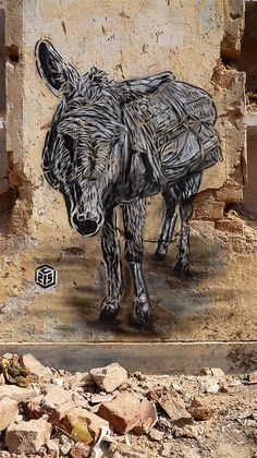 Street Art-C215 - Donkey Detail. by Romany WG, via Flickr