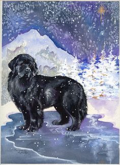 """This card was designed exclusively for Newf Emporium by UK artist Carol Pontin. Card is 5 x 7, and has the following text inside: """"May your Holidays sparkle and shine."""" Sold as a 12 pack with envelope"""