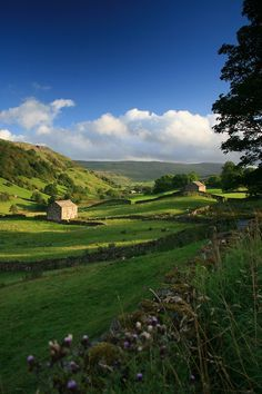 Angram Valley, Swaledale, North Yorkshire, England (by Lakeland-Photographs)