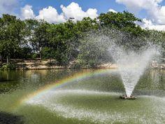 Mini rainbow at Heritage Duck Pond
