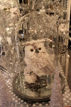 52 FLEA: Nest in Mystic at Christmas! check out the mirror under the cloche