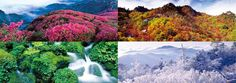 Different sceneries depends on four different seasons