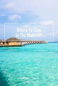 | Travel Maldives | Maldives Travel Guide | Luxury Resorts Maldives | Maldives Honeymoon | Backpacking Maldives | Maldives On A Budget | Maldives Highlights | Maldives Budget Travel | Maldives Hikes | Maldives Top Attractions | Maldives Hiking | Top Things To Do In Maldives | Top Islands In Maldives | Top Sights Maldives | Maldives Diving | Best Beaches Maldives  The Maldives | Maldives Travel | Maldives Honeymoon | Maldives