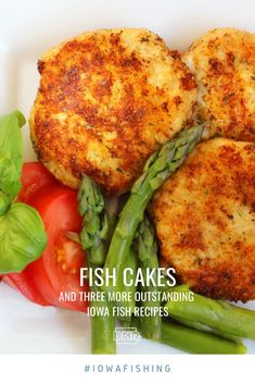 Shake up the fish fry with our recipes for fish tacos, fish cakes, pickled fish and more   Iowa DNR