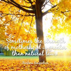 Beautiful #quote on #motherhood