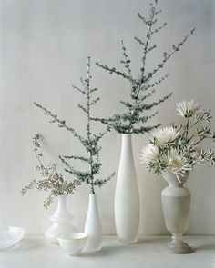 A combination of vintage and contemporary vessels holds white spider mums, seeded eucalyptus (available at florists), and blue Atlas cedar branches lightly frosted with silver floral spray paint. For a change of scene, line containers down the middle of a table.