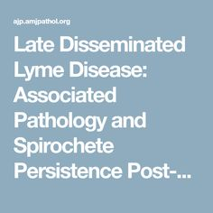Late Disseminated Lyme Disease: Associated Pathology and Spirochete Persistence Post-Treatment in Rhesus Macaques