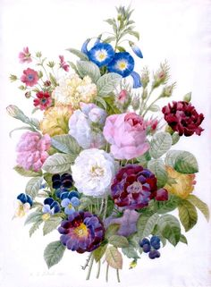 Bouquet Of Flowers~counted cross stitch pattern Floral Garden Chart Flowers Illustration, Botanical Illustration, Botanical Prints, Botanical Flowers, Modern Cross Stitch Patterns, Counted Cross Stitch Patterns, Cross Stitches, Art Floral, Flower Prints