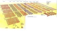 Orden de Batalla. Historia Militar: Las Legiones Romanas. Organización y Rangos. La Legión imperial