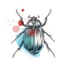One with nature tattoo thoughts 49 Ideas for 2019 Illustration Photo, Illustrations, Beetle Tattoo, Scarab Tattoo, Natural Form Art, Bug Art, Motifs Animal, Insect Art, Tatoo Art