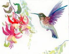 Hey, I found this really awesome Etsy listing at https://www.etsy.com/listing/125641757/hummingbird-original-watercolor-painting