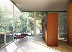 Image result for ludwig mies van der rohe interiors