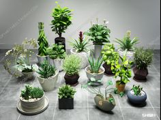 3d Plant Model 376 Free Download Minimalist Furniture, Free Plants, 3d, Health, Model, Health Care, Scale Model, Models, Salud