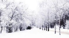 winter is so beautiful <3