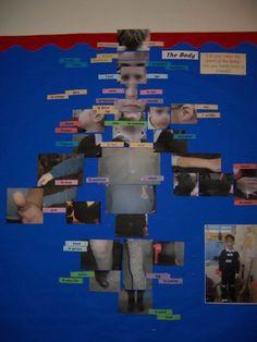 MFL ICT Display