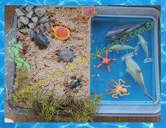 Brincando eu Aprendo: Caixa sensorial: animais aquáticos