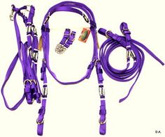 Bridle and tack is so cute in purple colors.