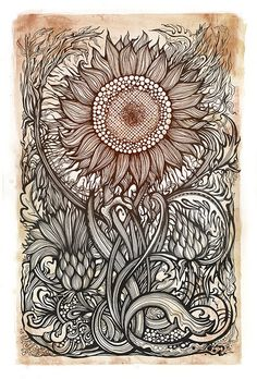 Awesome Ink drawing of Botanical Sunflower Doodles Zentangles, Zentangle Patterns, Zantangle Art, Doodle Art, Adult Coloring Pages, Amazing Art, Awesome, Amazing Drawings, Detailed Drawings