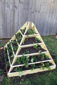 images about Raused strawberry beds on Pinterest
