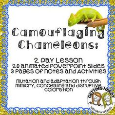 Mimicry & Camouflage for Evolution- Animated PowerPoint and engaging two day lesson that gets students thinking about the industrial revolution using a camouflaging activity. #gettingnerdy