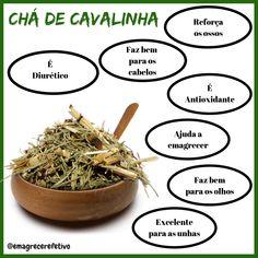 Excelente chá, adoro  #saude #bemestar #cavalinha #cha #cafe #bebida Non Alcoholic, Fodmap, Botany, Natural Health, Fitness Inspiration, Natural Remedies, Health And Beauty, Food And Drink, Low Carb