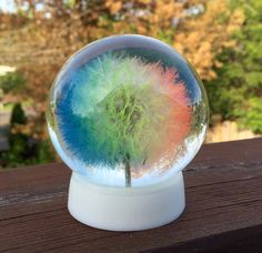 A personal favorite from my Etsy shop https://www.etsy.com/listing/279124414/rainbow-large-oregonian-dandelion
